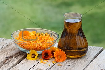 Calendula flowers and oil