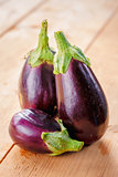 Healthy Organic Vegetables Eggplants on a Wooden Background