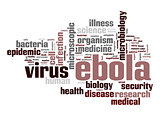 Ebola virus word cloud