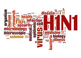 H1N1 word cloud