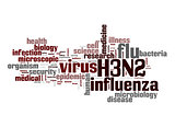H3N2 word cloud