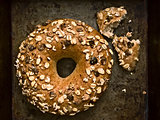 rustic plain bagel
