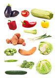 Collection of seasonal vegetable images isolated on white backgr