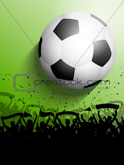 Football or soccer crowd