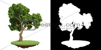 Green Tree on Grass with Detail Raster Mask.