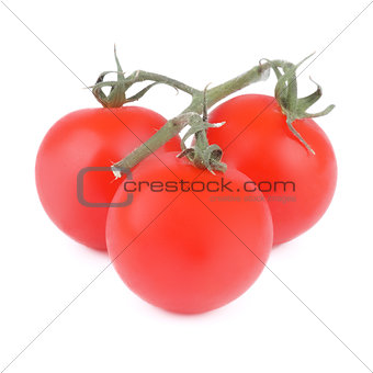 Tomatoes with Twigs