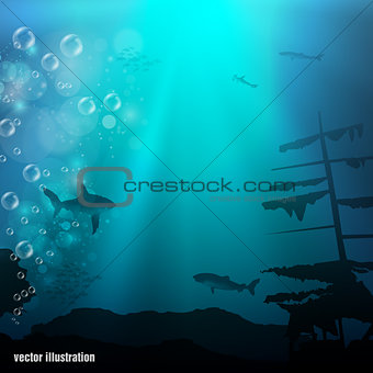 Beautiful and dangerous underwater world with sharks and old ship