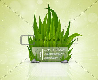 Green grass with a glass plate for the text