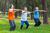 seniors friends or family doing gymnastics in the park