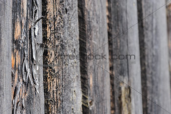 cracked aged wooden boards