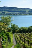 Lake Hallwil Switzerland