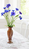Spring bunch blue flower on table
