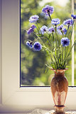 Bunch blue summery flowers on window