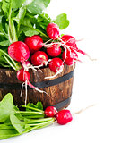Vegetables fresh radish in wooden bucket