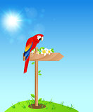 Background with red parrot