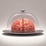 Brain Dome
