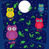 Owls in a moonlit night