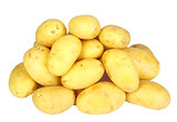 Heap of yellow raw potatos