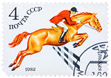Stamp printed in USSR shows a Donskaya horse, series horse breed