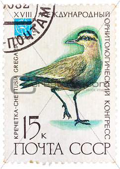 Stamp printed in USSR (Russia) shows a bird Chettusia gregaria
