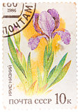 "Stamp printed in USSR from the ""Plants of Russian Steppes "" issu"