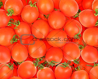 Background of ripe red tomatos
