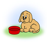 Dog with empty Food Bowl.