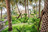 Garden Misfah Abreyeen