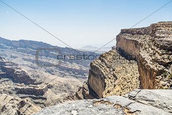 Camel in Wahiba Oman