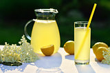 Elderflower juice with lemon on table in a garden