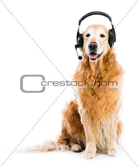 Retriever with headset