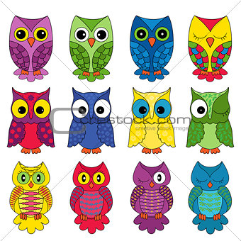 Set of sixteen owls