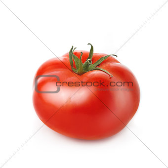 Single Fresh red Tomato on white background