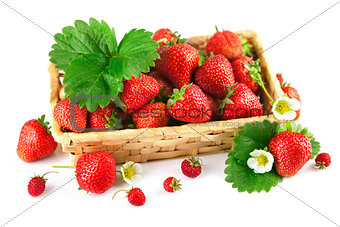 Basket fresh strawberry with green leaf and flower