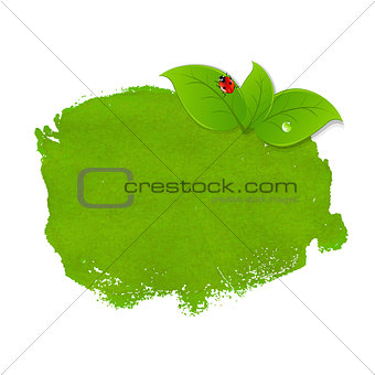 Green Stain With Leaves