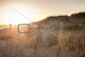 Beautiful sunlight landscape with added lens flare effect filter