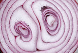 Red Onion Background