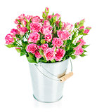 Bunch pink roses in bucket