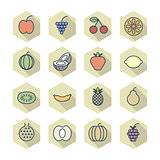 Thin Line Icons For Fruits