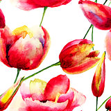 Stylized Tulips and Poppy flowers illustration