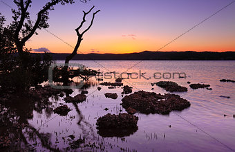 Tidal shallows at sundown landscape