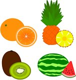 Fruits - orange, pineapple, kiwi, watermelon