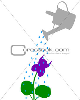Watering pot and flower