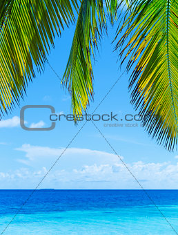 Beautiful tropical landscape