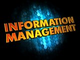Information Management - Gold 3D Words.