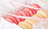 gift in a box: French macaroon