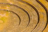 Moray ruins Cuzco Peru