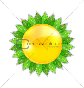 Abstract sun with leaves isolated on white background