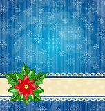 Christmas wallpaper with flower poinsettia