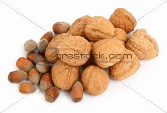 group of walnuts and hazelnuts